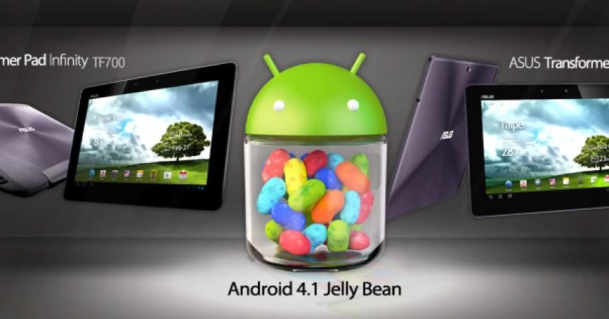 Tablety ASUSa zaktualizowane do Androida 4.1 Jeally Bean
