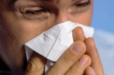 Stop alergii na roztocze!
