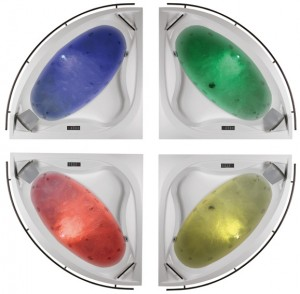 WS lx AVII z kolorami 2008