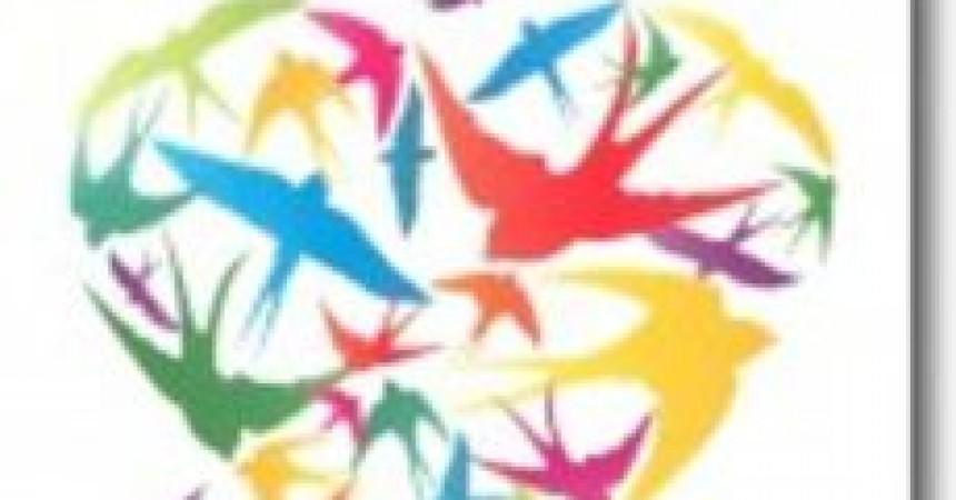 Ptaki. Prawdziwi mistrzowie ziemi