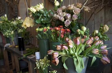 Gdzie zaopatrywać się w kwiaty?
