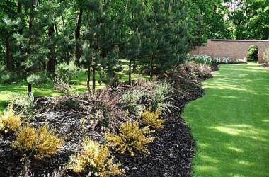 Jak najlepiej nawadniać swój trawnik?