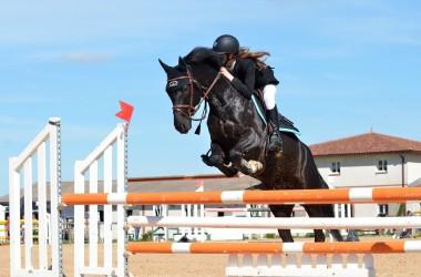 Jeździectwo konne – jak zacząć przygodę?