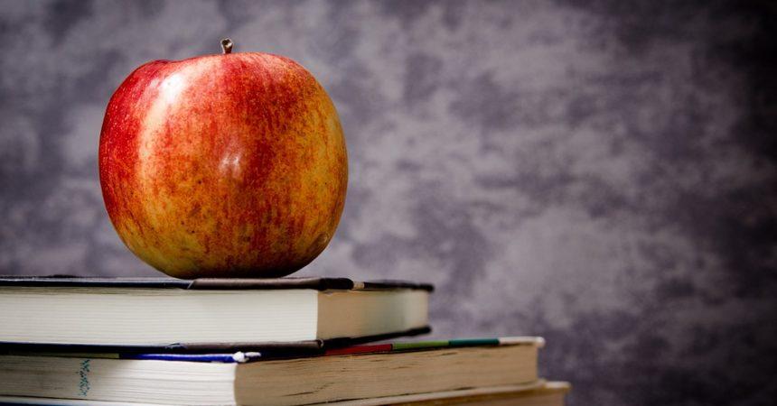 Książki – warto czytać?