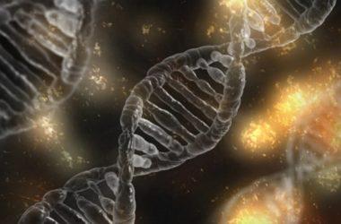 Piosenki zapisane w DNA