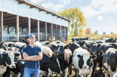 Kredyty dla rolników – gotówka na dowolny cel
