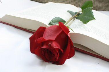 Książka – idealny prezent na Dzień Kobiet