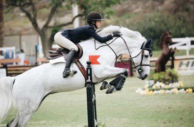 Strój jeździecki – w co należy się zaopatrzyć?