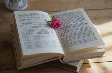 Wydanie książki w modelu hybrydowym