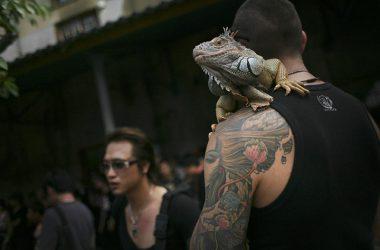 Tattoofest — święto tatuażu