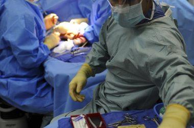 Nici chirurgiczne i ich niezwykła różnorodność