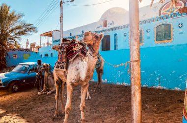 Wyjątkowe wakacje w Egipcie — co warto wiedzieć przed podróżą?