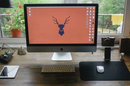 Jaki monitor używany wybrać?