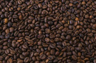 Czy wiesz od czego zależy smak Twojej kawy?