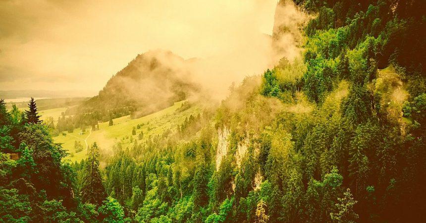 Sezon wiosenny w Niemczech – czy warto tam pojechać i co można zobaczyć?
