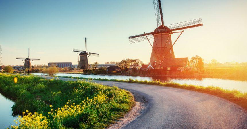 Praca dla Polaków w Holandii. Zobacz, jakie zawody na Ciebie czekają